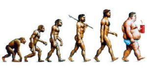 evolution of obestity